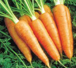 Hogar f cil recetas de cocina encurtidos caseros zanahorias - Encurtido de zanahoria ...
